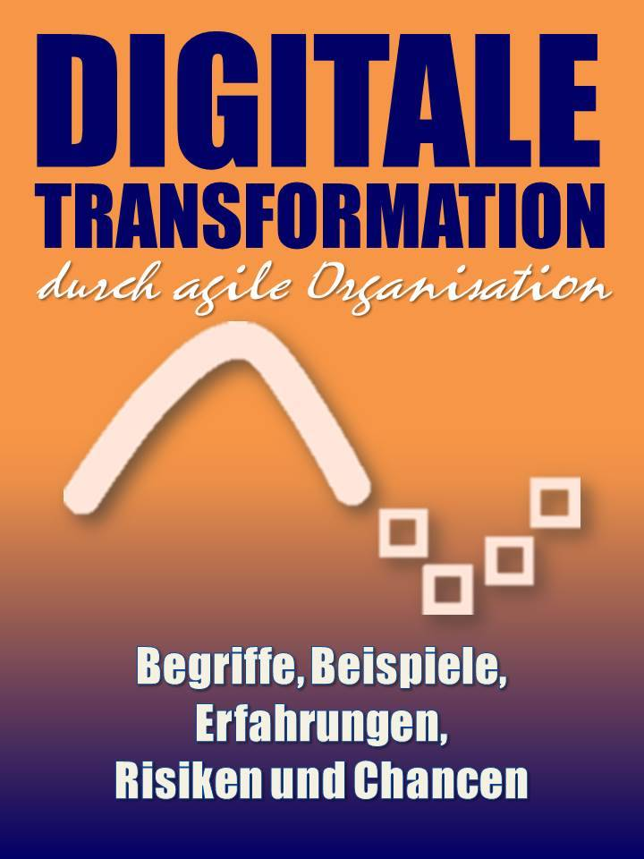 Digitale Transformation durch agile Organisation - Praxis-Thema von und mit Niko Bayer - Digitalisierung, Change Management, KVP